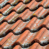 6 Compelling Reasons Why Restoring Your Roof Should Be Your Priority