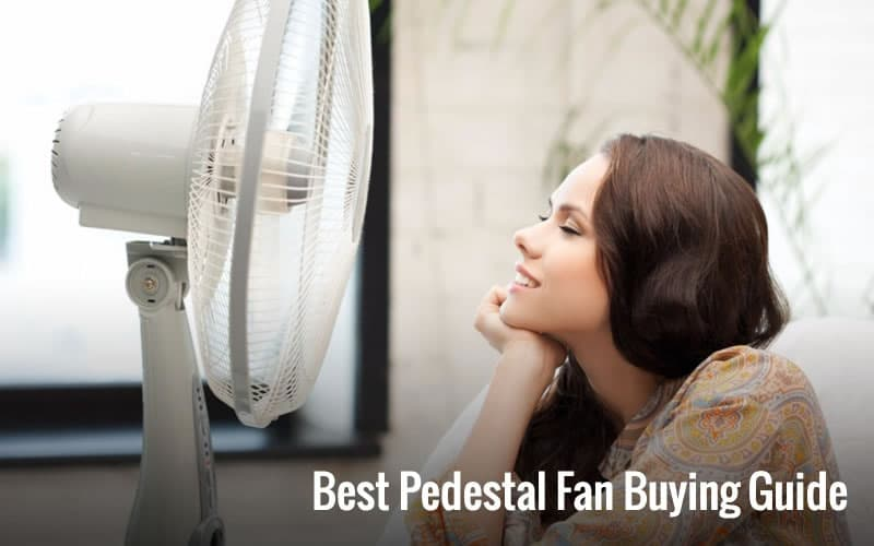 Best Pedestal Fan Buying Guide