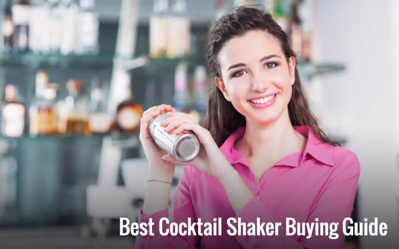 best cocktail shaker buying guide