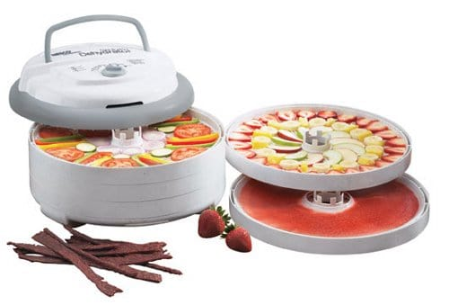 Top Food Dehydrator for Jerky and Fruit