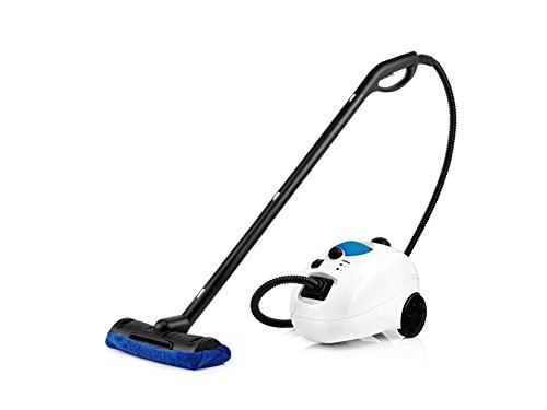 What are some highly rated steam cleaners?