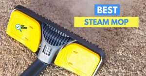 Top Rated Steam Mop