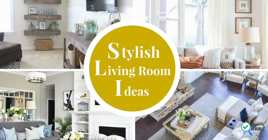 Stylish Living Room Themes Anyone Can Do Top Reveal