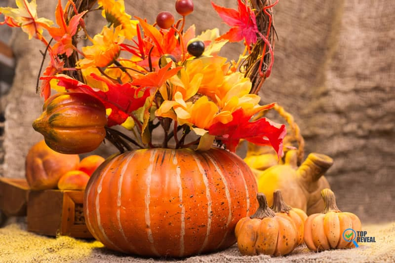pumpkins are often used as decorative pieces