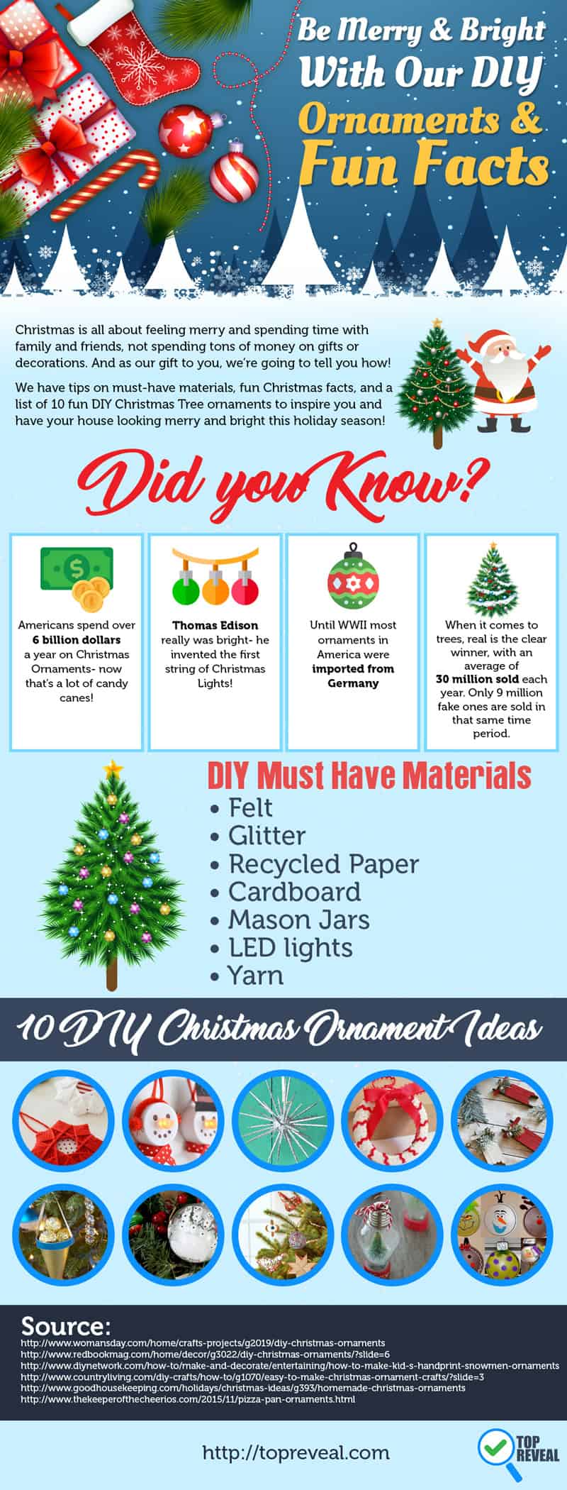 Homemade Christmas Ornaments DIY Infographic