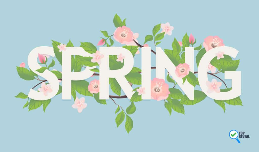 Inspiring Spring Diy Decor Ideas Infographic That Are Spring