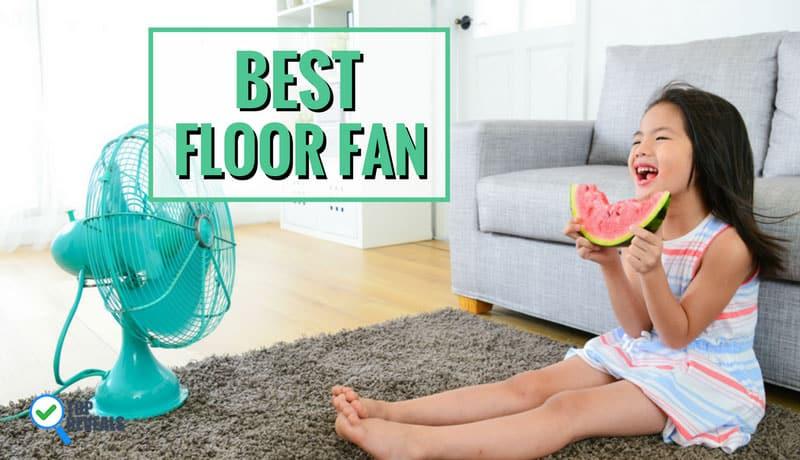 Best Floor Fan Reviews