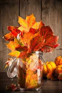 leaves in mason jars