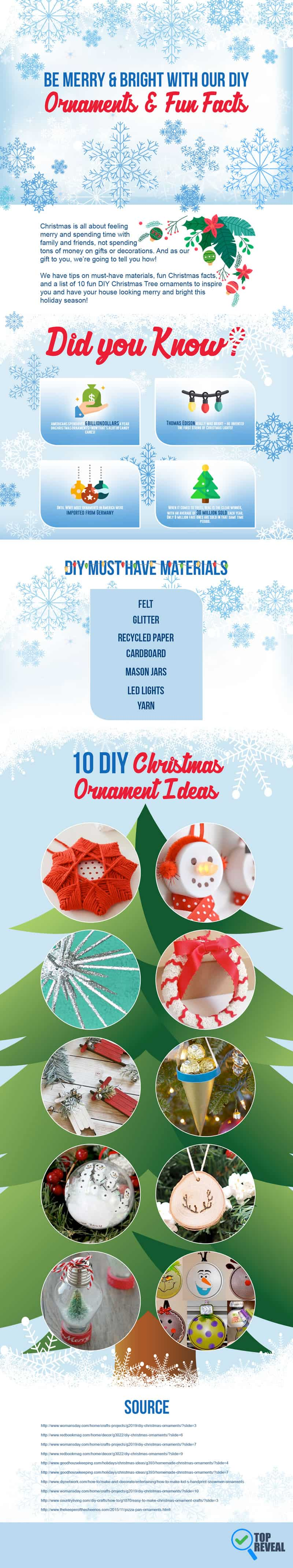DIY Christmas Ornament Ideas Infographic