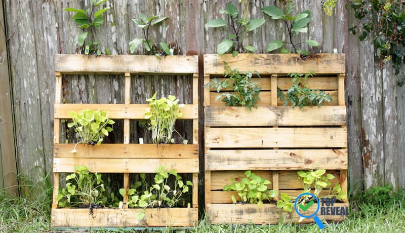 DIY Pallet Planter Ideas