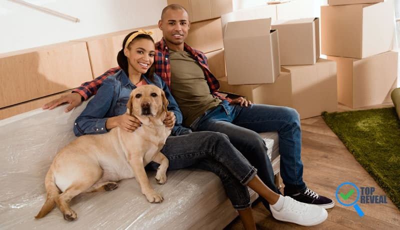 Tips for Home Moving with Pets