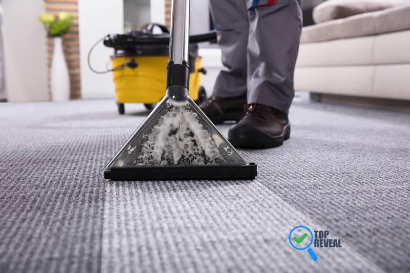 Carpet Cleaner Professional