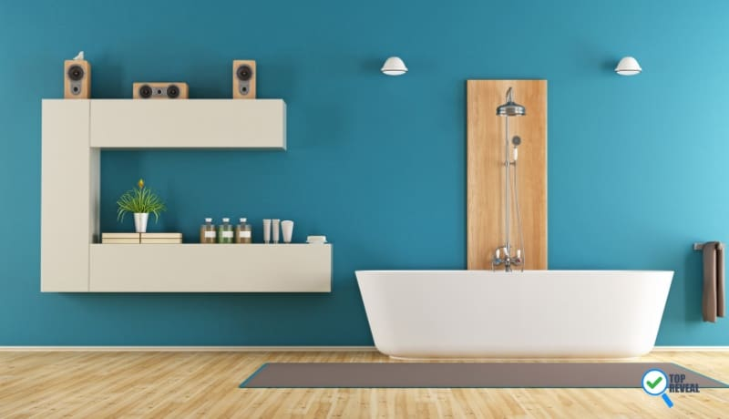 Blue Bathroom Color Ideas