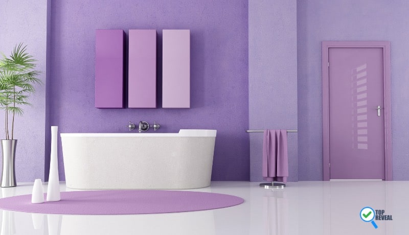 Purple Bathroom Color Ideas
