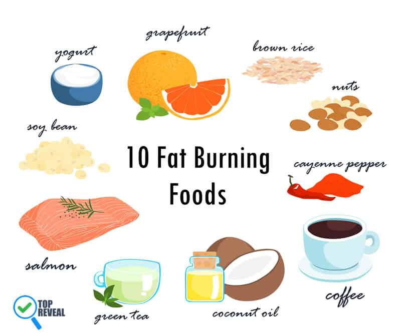 Fat-Burning Diet Recipes for Women