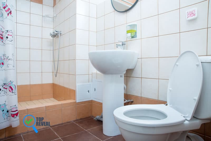 Signs Your Toilet Needs to Be Fixed