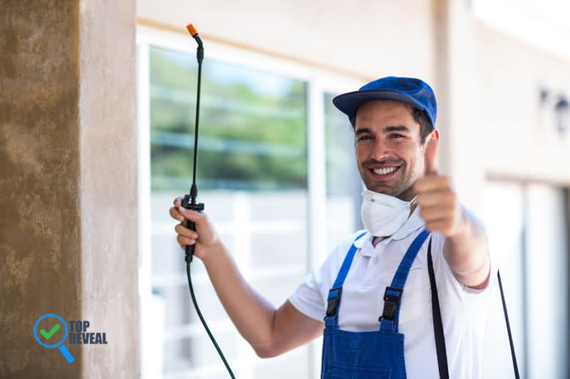Pest Control For Homes And Businesses