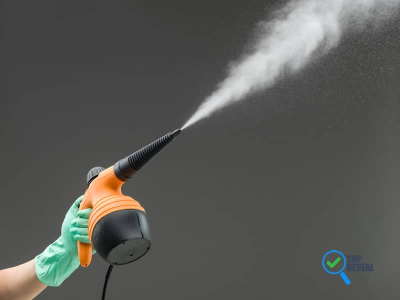 Portable Handheld Steam Cleaners