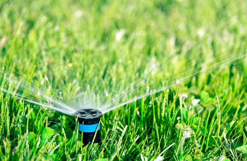 Getting Irrigation Supplies For Your Garden