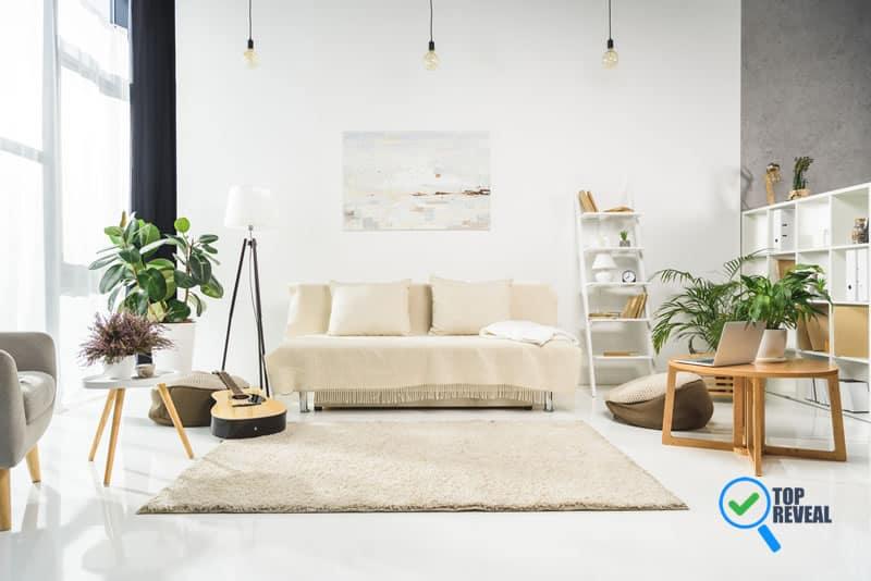 Simple Ways to Embrace Organic Interior Design