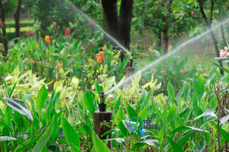 Things To Learn About Sprinkler Winterizing