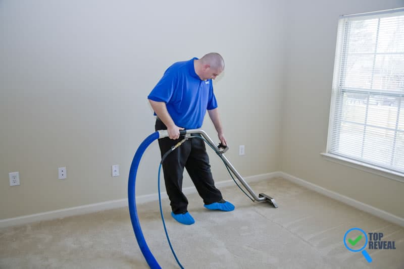 Essential Services That Will Keep Your Home Free Of Pests