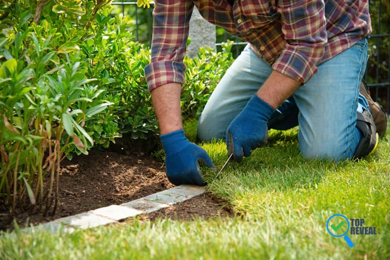 How to Choose the Sod And Lawn Installation Services in Your Area