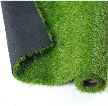 Lawn Grass Options