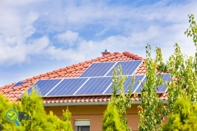 Easy Ways to Make Your Home More Eco Friendly