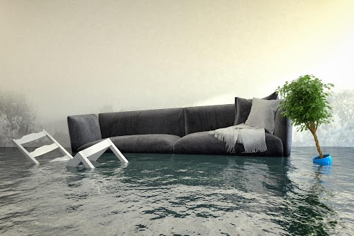 What to Do After Your Home Suffers Water Damage