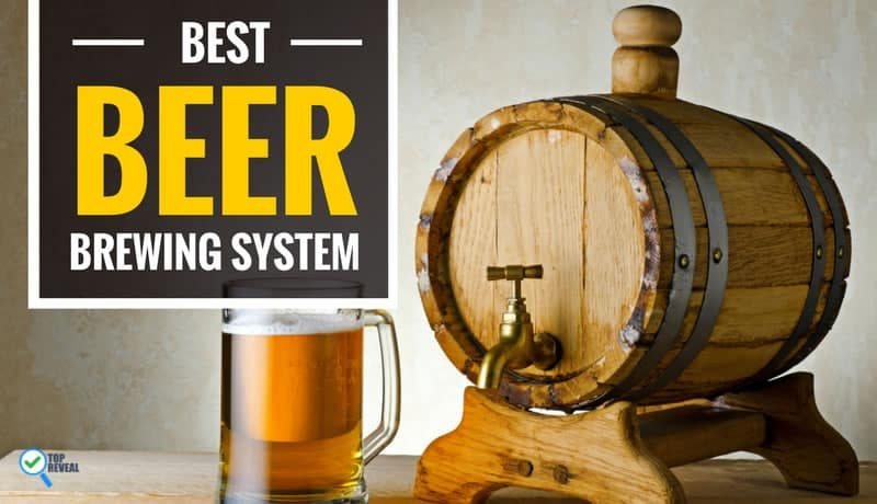Top 5 Best Home Beer Brewing Kit and System Reviews: I'll Drink to That!