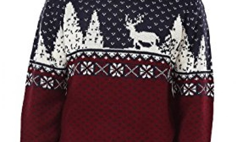 Best Christmas Holiday Sweater (2017)