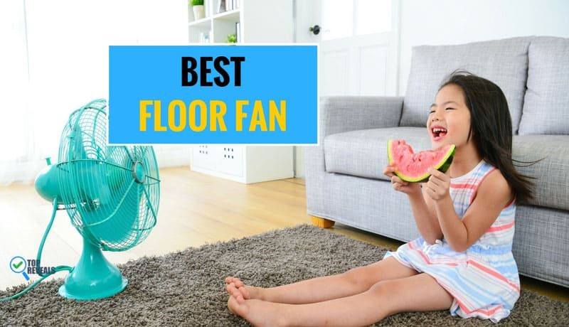 Best Floor Fan Comparison Review (2018): Cool Products to Keep You Cool