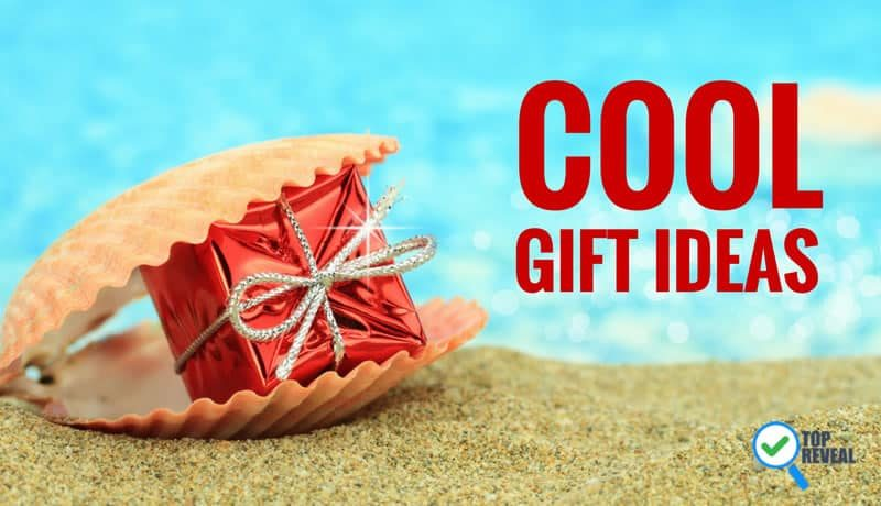 Amazingly Cool Gift Ideas for the Holidays or Any Day
