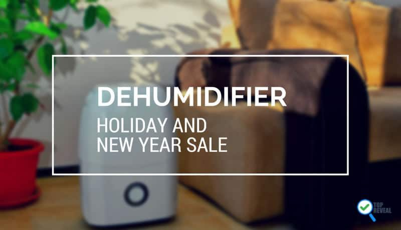 "Best Dehumidifier Holiday Sale and Gift Buying Guide: ""Wring"" in the Holidays"