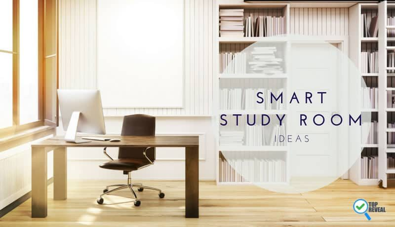 Smart Study Room Ideas that are Fun and Focused